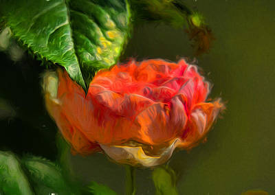 Artistic Rose And Leaf Poster by Leif Sohlman