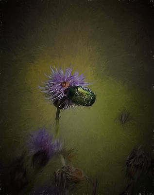 Artistic Two Beetles On A Thistle Flower Poster by Leif Sohlman