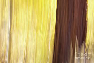 Aspen Blur #3 Poster