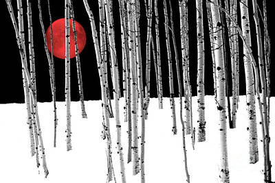 Poster featuring the photograph Aspen Grove Winter by Juli Scalzi