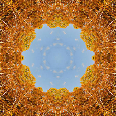 Poster featuring the photograph Aspen Kaleidoscope by Bill Barber