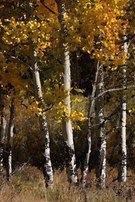 Aspens Palate Knife Poster