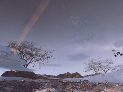 Asphalt Reflection I Poster by Anna Villarreal Garbis
