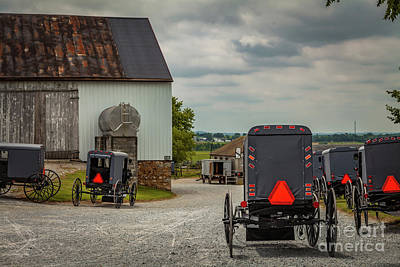 Assorted Amish Buggies At Barn Poster