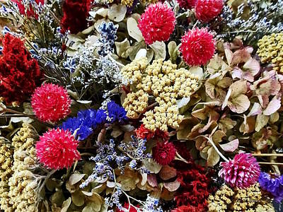 Assortment Of Dried Flowers Poster by Susan Savad