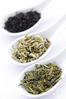Assortment Of Dry Tea Leaves In Spoons Poster by Elena Elisseeva