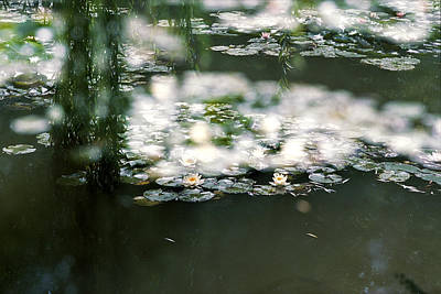Poster featuring the photograph At Claude Monet's Water Garden 5 by Dubi Roman