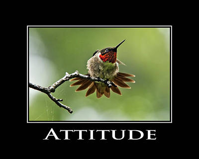 Attitude Inspirational Motivational Poster Art Poster by Christina Rollo