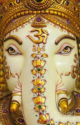Aum Ganesha Poster by Tim Gainey