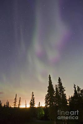 Auroras Over Anchorage Poster