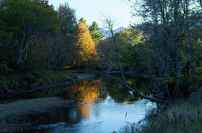 Ausable River Autumn Poster