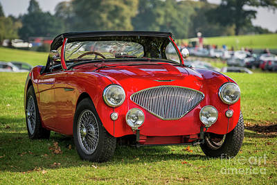 Austin Healey 100 Poster by Adrian Evans
