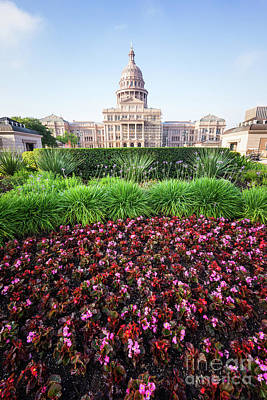 Austin Texas State Capitol Flowers Poster by Paul Velgos