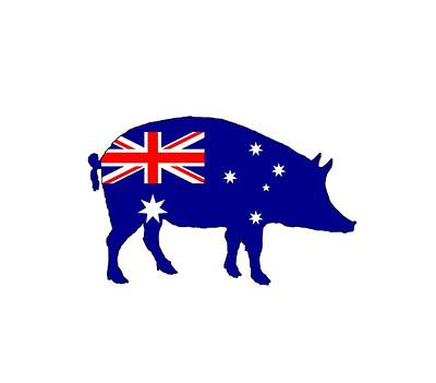 Australian Flag - Pig Poster by Mordax Furittus