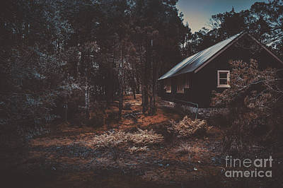 Australian Shack In A Dense Autumn Forest Poster