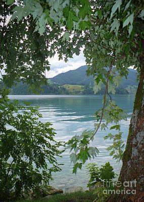 Austrian Lake Through The Trees Poster by Carol Groenen
