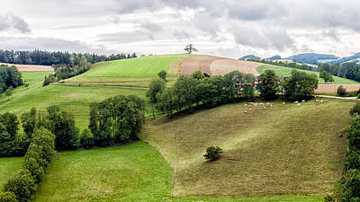 Austrian Landscape Poster by John Hesley