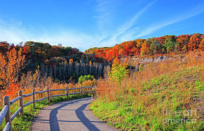 Poster featuring the photograph Autumn Hiking Trail by Charline Xia