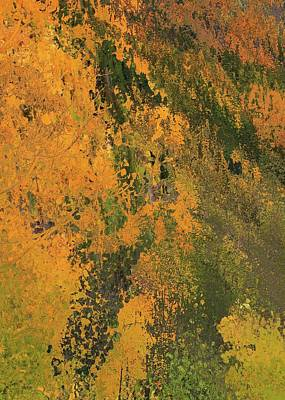 Autumn Abstract Number 3 Poster