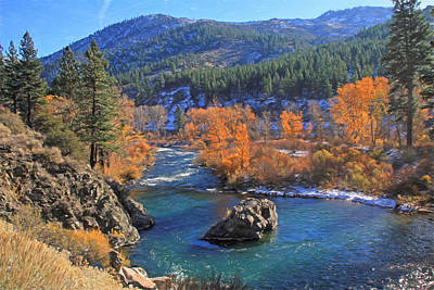 Autumn Along The Truckee River Poster by Donna Kennedy