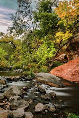 Autumn Arrives In Arizona  Poster by Saija Lehtonen