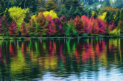 Autumn At Green Lake Seattle Poster by Yulia Kazansky