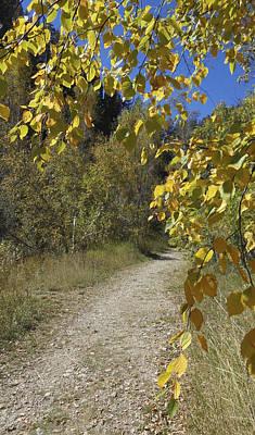 Autumn At Iron Creek Poster
