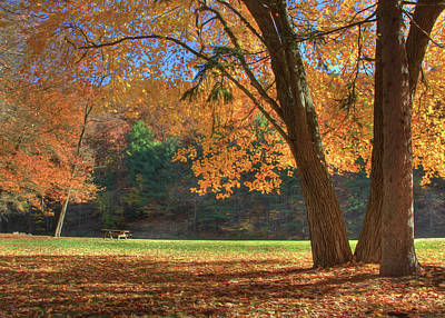 Poster featuring the photograph Autumn At Lykens Glen by Lori Deiter