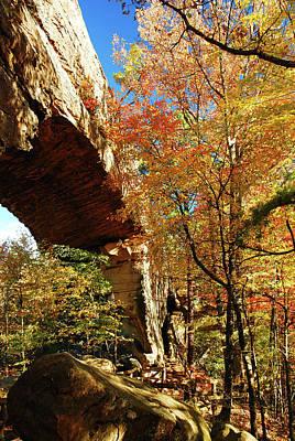 Autumn At Natural Bridge State Resort Poster
