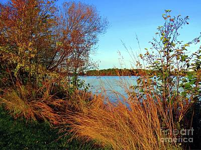 Autumn At The Lake Poster by Desiree Paquette
