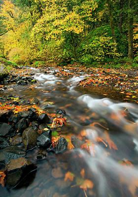Autumn Beneath Poster by Mike  Dawson
