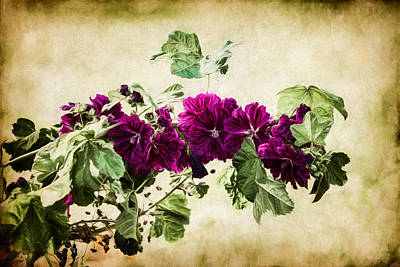 Autumn Blooms Paintography Poster