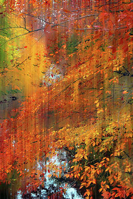 Poster featuring the photograph Autumn Cascade by Jessica Jenney