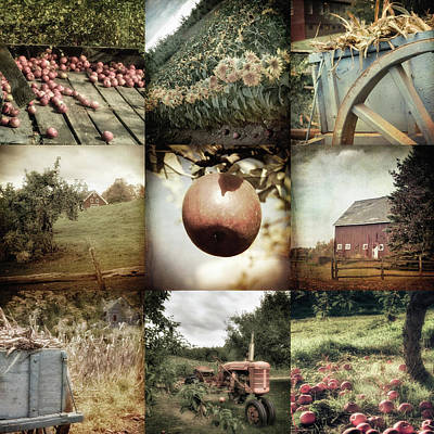 Autumn Collage - Autumn In New England Poster