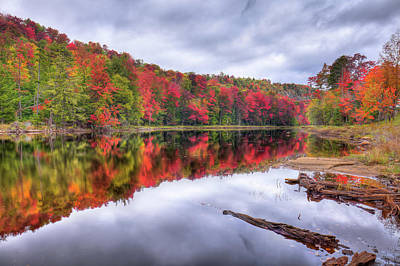 Poster featuring the photograph Autumn Color At The Pond by David Patterson