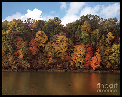 Autumn Color In The Ozarks, Southwest Missouri Usa Poster by Greg Kopriva