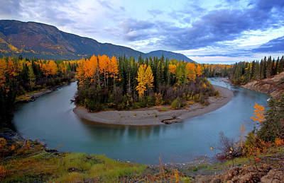 Autumn Colors Along Tanzilla River In Northern British Columbia Poster by Mark Duffy