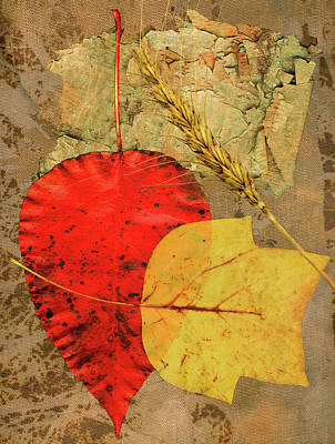 Poster featuring the painting Autumn Colors by John Dyess