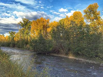 Autumn Colors On The Chama River Poster by Debra Martz