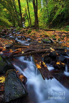 Autumn Downstream Poster by Mike Dawson