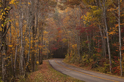 Autumn Drive Poster by Andrew Soundarajan