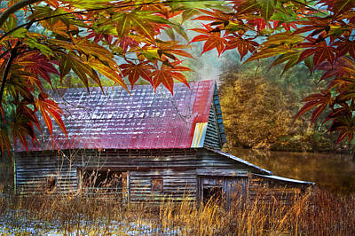 Autumn Embrace Poster by Debra and Dave Vanderlaan