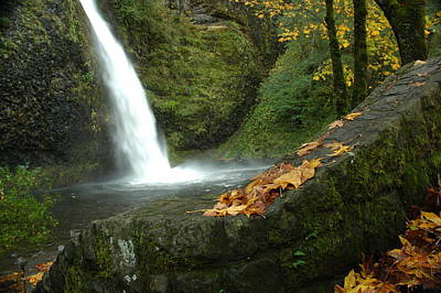Poster featuring the photograph Autumn Falls by Lori Mellen-Pagliaro