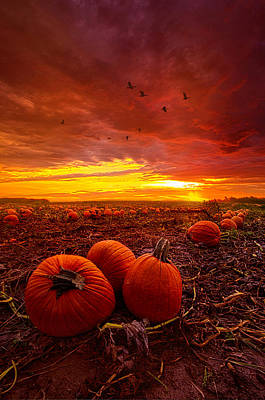 Autumn Falls Poster by Phil Koch