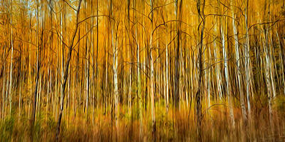 Autumn Fire Poster by Theresa Tahara