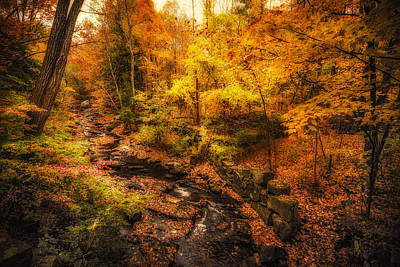 Poster featuring the photograph Autumn Flow by Robert Clifford