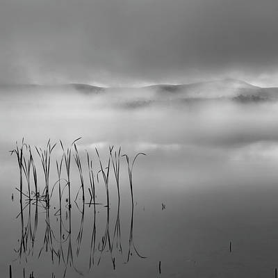 Poster featuring the photograph Autumn Fog Black And White Square by Bill Wakeley