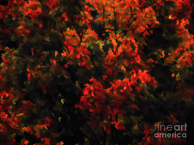 Autumn Foliage 5 Poster by Lanjee Chee