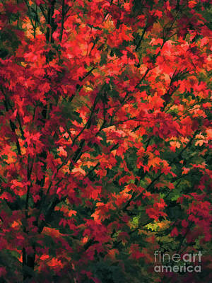 Autumn Foliage 6 Poster by Lanjee Chee