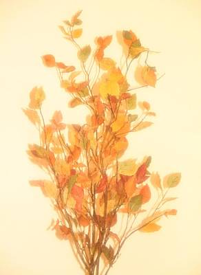 Autumn Foliage Fantasy Poster by Dan Sproul